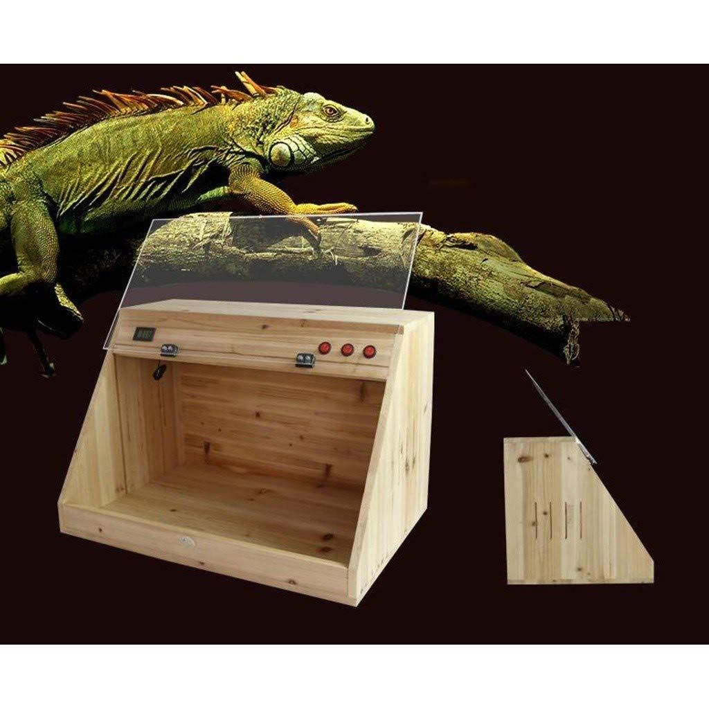 Plano Inclinado reptil Box, Vivarium lagarto tortuga serpiente ...