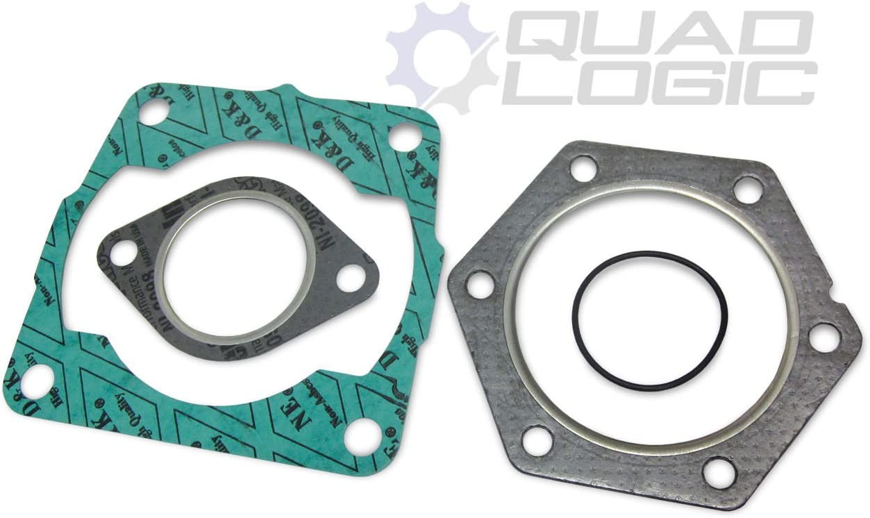 2000 POLARIS XPLORER 250 PISTON,TOP END GASKET,BEARING KIT *73mm BORE .040 OVER*