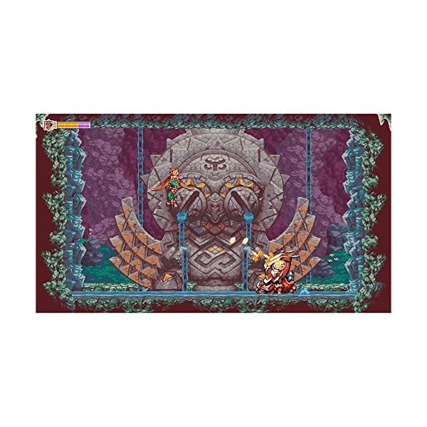Owlboy Standard Edition - Nintendo Switch 6