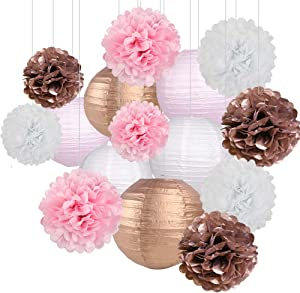 Rose Gold Party Decorations, Pink Rose Gold Paper Lanterns and Pom Poms Flowers for Birthday Party Bridal Shower Bachelorette Party Decor 15PCS