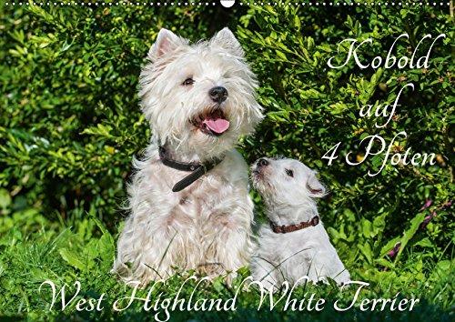 west highland white terriers westies 2019 slimline. Black Bedroom Furniture Sets. Home Design Ideas