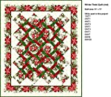 Quilt Kit~The Winter Twist Red Quilt by Jason Yenter~64'' x 75''~ Pattern/Fabric~Top/Binding