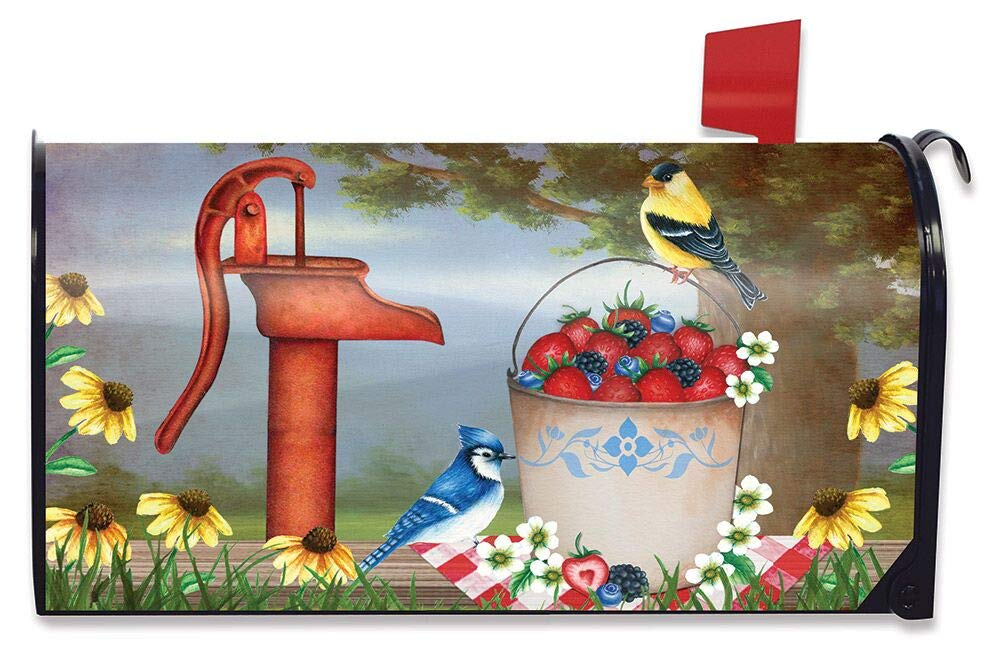 Briarwood Lane Berry Bounty Spring Magnetic Mailbox Cover Waterpump Floral Standard