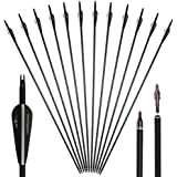 "Huntingdoor 30"" Archery Carbon Target Arrows Hunting Arrows with Adjustable Nock and Replaceable Field Points for Compound Bow or Recurve Bow (12 pack)"
