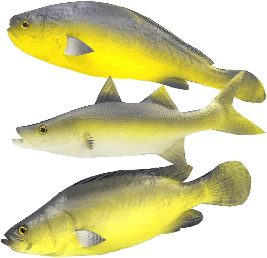 Ailejia 3 PCS Fake Fish Food Decoration Fish Party Decorations Shop Display Decoration Sea Creatures Kitchen Decoration Photography Props
