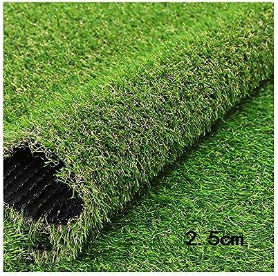 GHHZZQ Césped Artificial Falsa Alta Densidad Hierba Otoño Resistente Al Desgaste Retardante Llama con Agujero Drenaje Jardín Patio, Altura La Hierba 2.5cm (Color : 2.5cm, Size : 2x8m): Amazon.es: Hogar
