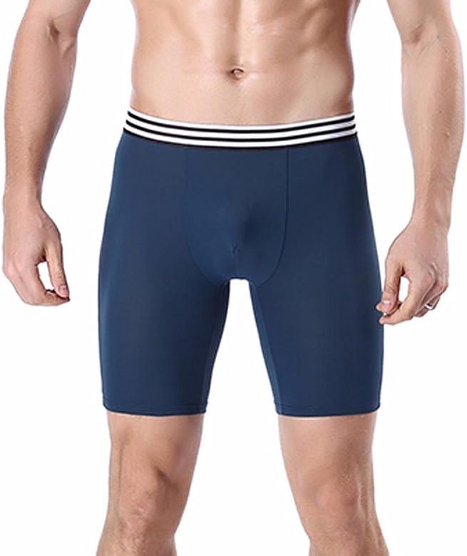 Lenfesh Ropa Interior Atractiva de los Hombres Pantalones Cortos Deportivos Bóxer Hombre (L, Azul): Amazon.es: Ropa y accesorios