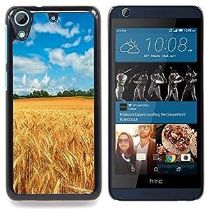 """Qstar Arte & diseño plástico duro Fundas Cover Cubre Hard Case Cover para HTC Desire 626 (Cultivos pintoresco campo de verano"""")"""