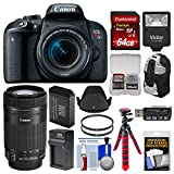 Cheap Canon EOS Rebel T7i Digital SLR Camera & EF-S 18-55mm + 55-250mm is STM Lens + 64GB Card + Backpack + Flash + Battery & Charger + Tripod + Kit