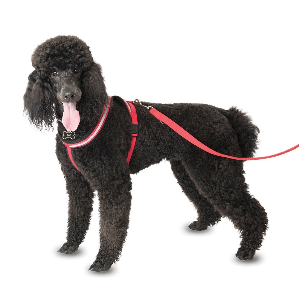 Company of Animals Comfy Harness for Dogs, XXL, Red Black White