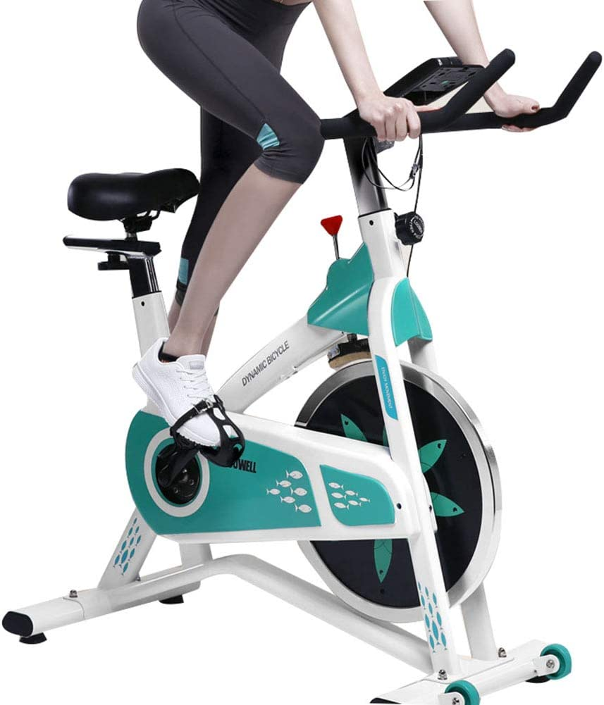 BF-DCGUN Ejercicio de Ciclismo Interior, Bicicleta de Spinning ...