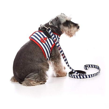 WINNER POP Juego de arnés y cinturón para Cachorros: arnés para ...