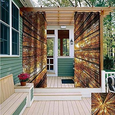 AFGG Grommet Curtain,Forest Birch Trees in Autumn,Energy Efficient, Room Darkening,
