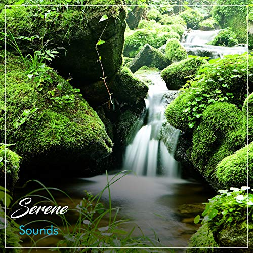 #12 Serene Sounds for Yoga Workout