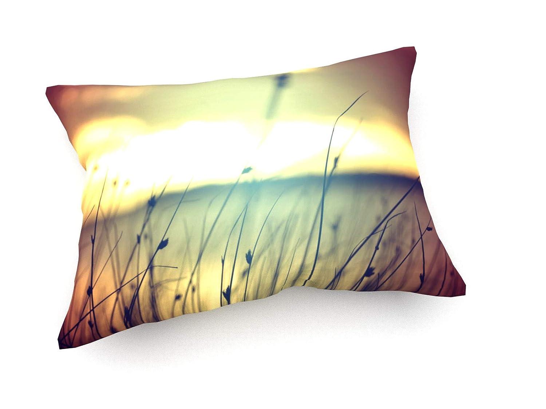 Weewado Cienpies Design Design Design - Wilde Gräser im Goldenen Sommer Sonnenuntergang - 60x40 cm - Sofa-Kissen aus Satin - Kunst, Gemälde, Foto, Bild auf Kissen - Landschaft B07P18SM4J Zierkissen cf9f18