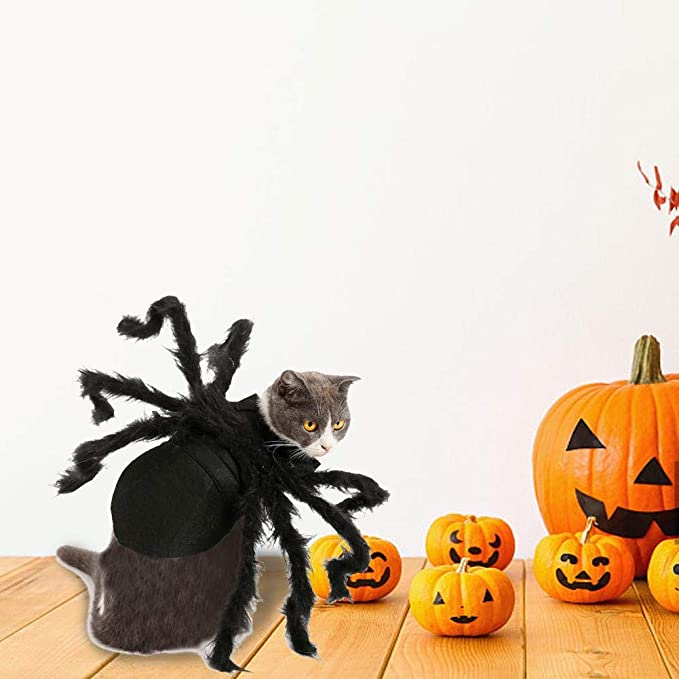 Kapokilly Disfraces De Mascotas De Araña De Halloween,Disfraz De ...