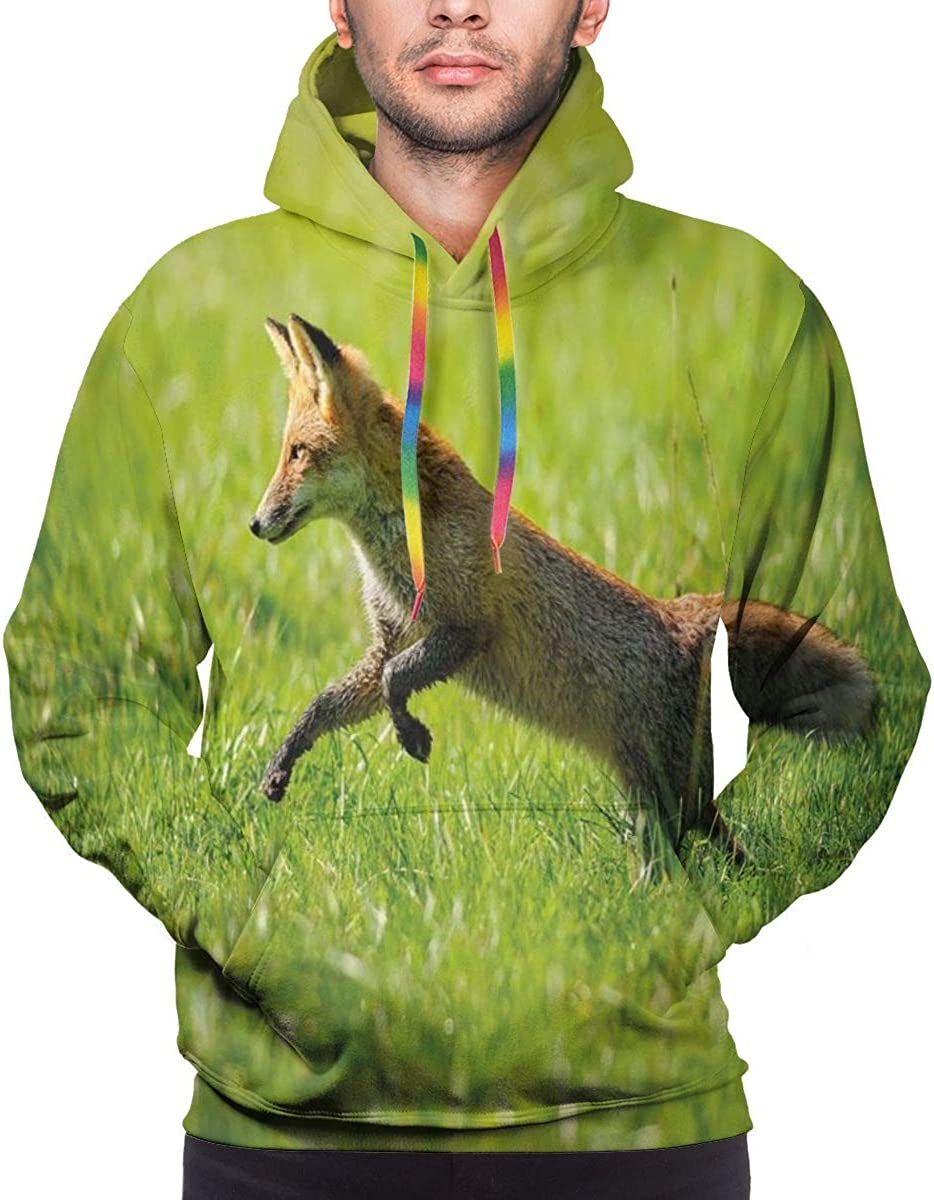Men's Hoodies 3D Print Pullover Sweatershirt,Red Fox Jumping Running In Fresh Green Grass Daytime Nimble Clever Ferocious Canine,