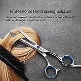 Hair Thinning Scissors Cutting Teeth Shears