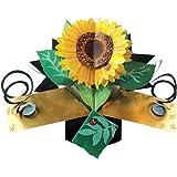 Second Nature POP042 - Tarjeta de felicitación desplegable, diseño de copas de cóctel y fruta