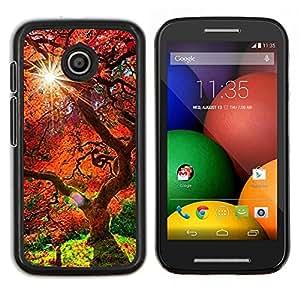 Árbol rojo viejo- Metal de aluminio y de plástico duro Caja del teléfono - Negro - Motorola Moto E / XT1021 / XT1022