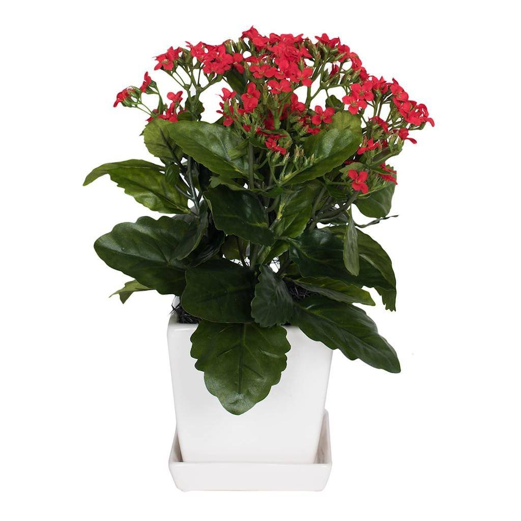 Vickerman F12235 Red Kalanchoe Everyday Floral