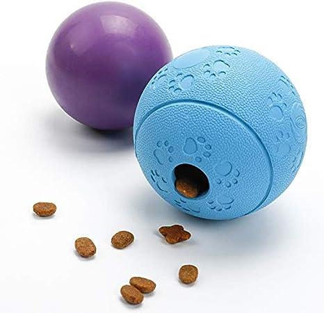 ZDY BOX Paquete de 2 Bolas de Perro - Bola Flotante + Bola de ...