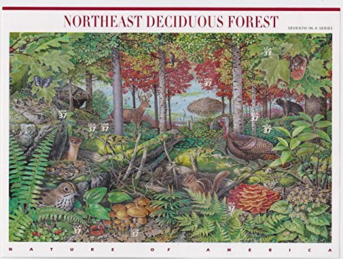 Northeast Deciduous Forest Pane of Ten 37 Cent Stamps Scott 3899 by (Northeast Hobby)