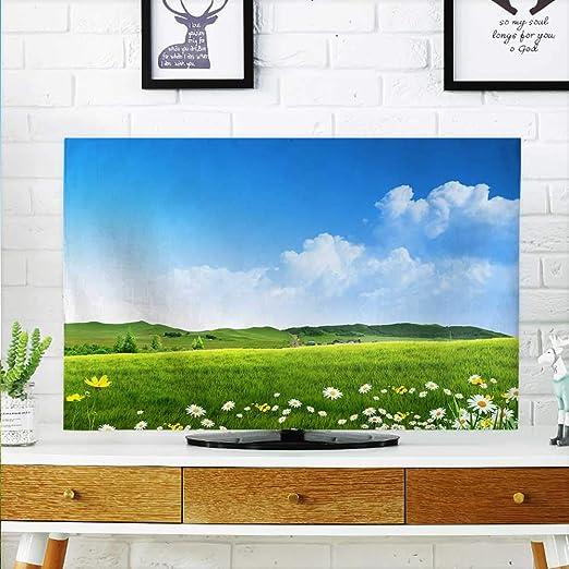 Protege tu televisor de Cielo Azul y Nubes Blancas y la Pradera ...