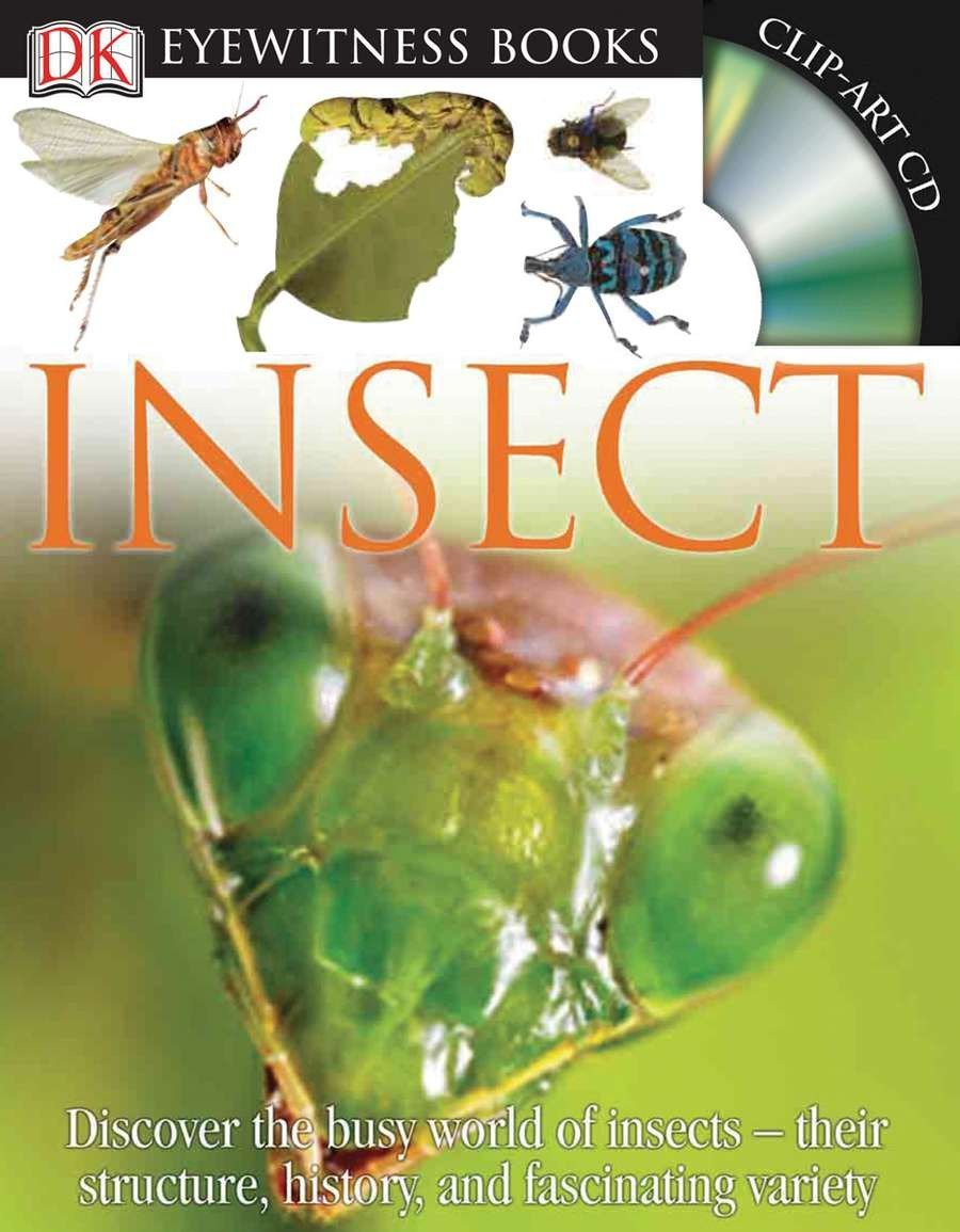 Insect (DK Eyewitness Books)