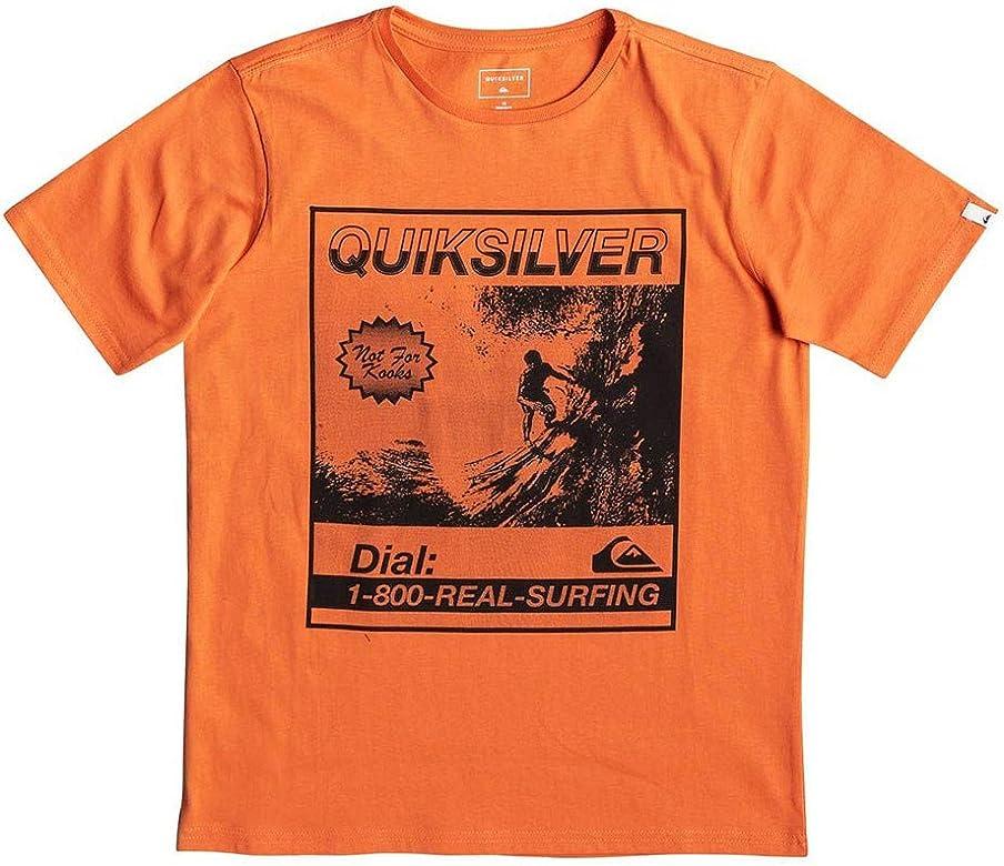 Quiksilver Temple of The Dog Camiseta, Niños, Naranja (Flamingo), L: Quiksilver: Amazon.es: Ropa y accesorios