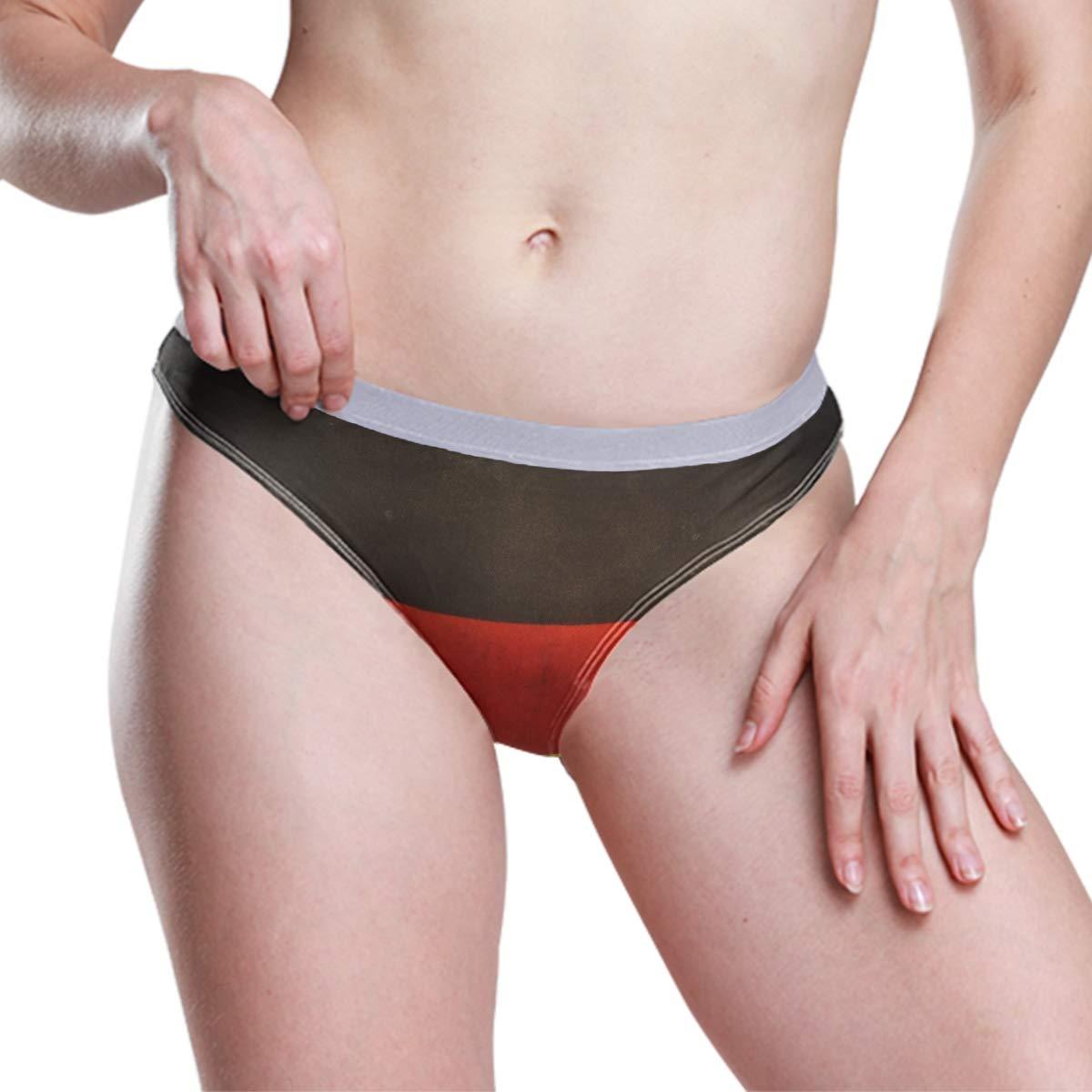 FAJRO Grunge German Flag Womens Low-Rise Underwear Panties Spandex