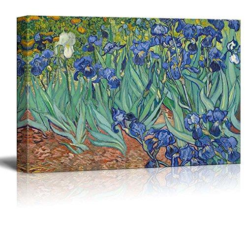 Irises by Van Gogh Giclee ped Gallery