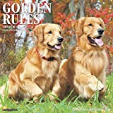 Golden Rules - 2016 Calendar 12 x 12in