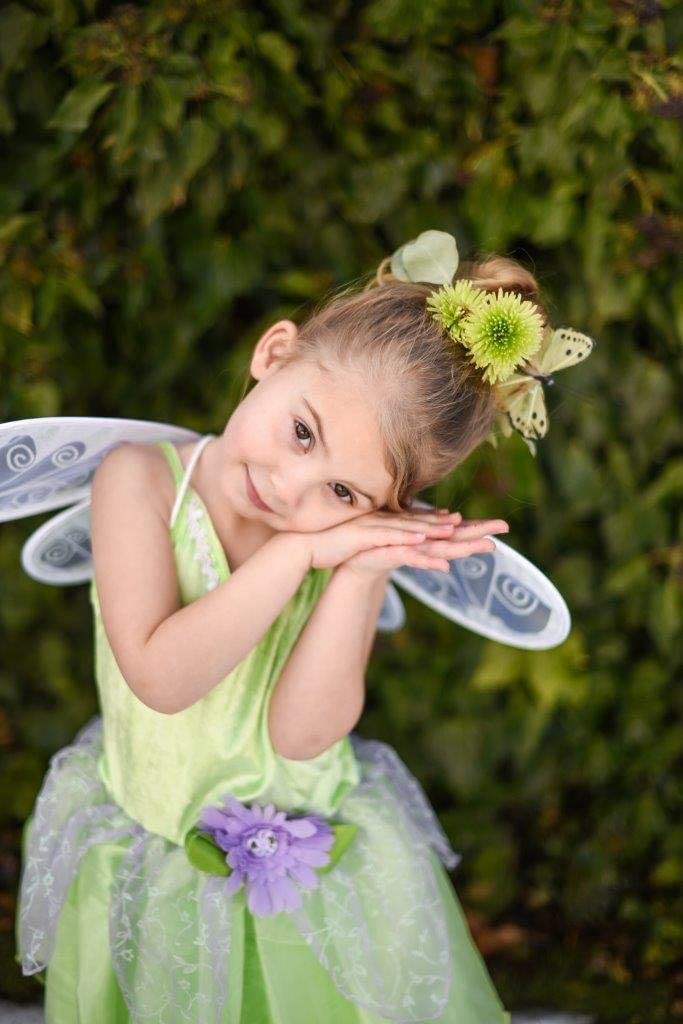 Medium Age 3-5 Little Adventures Tinkerbell Fairy Dress Up Costume
