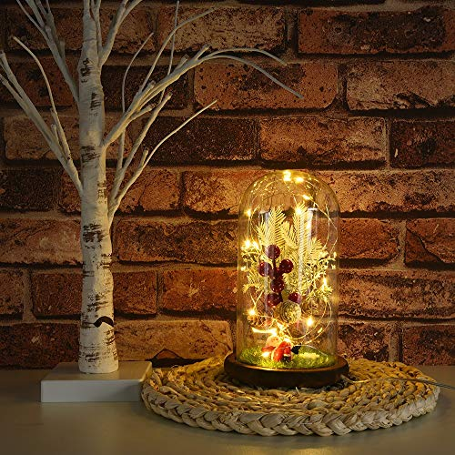 ASOBIMONO Miniature Tree Micro Landscape LED Night Light with Glass Shade, A Novelty Gift for Mother's Day or Home Decoration(US Stock) ()