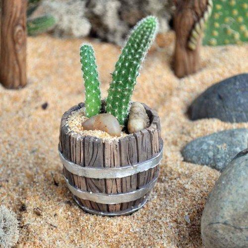 Amazon.com : Cactus Garden Mini Barrel Planter (Cactus Not Included) :  Garden U0026 Outdoor