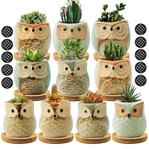 "FairyLavie Succulent Pots, 2.5"" Owl Planter Owl Pot, Small Pots for Plants Cute Small Planter with Accessories, Great…"