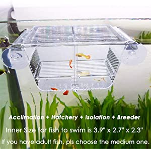 capetsma Fish Breeding Box, Acrylic Fish Isolation Box with Suction Cups, Aquarium Acclimation Hatchery Incubator for Baby Fishes Shrimp Clownfish and Guppy.