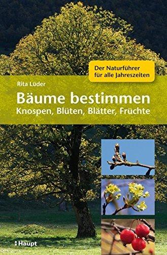 Bäume bestimmen - Knospen, Blüten, Blätter, Früchte: Der Naturführer für alle Jahreszeiten by Rita Lüder (2013-03-13)