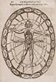 Athanasius Kircher : 'Typus Sympathicus Microcosmi cum Migacosmo' (Musurgia Universalis, 1650) - Giclee Fine Art Print