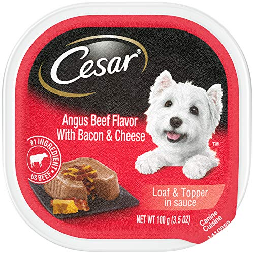 CESAR Wet Dog Food Loaf & Topper in Sauce Angus Beef Flavor With Bacon & Cheese, (24) 3.5 oz. Trays