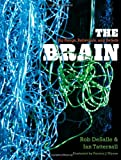 The Brain, Rob DeSalle and Ian Tattersall, 0300175221