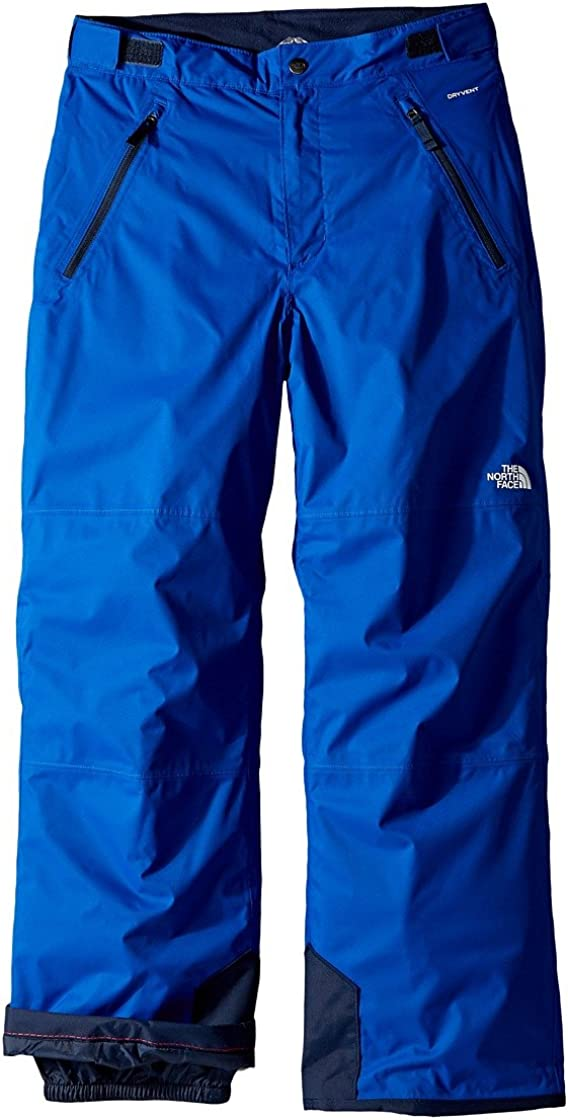The North Face Kids Freedom Insulated Pants Little Kids//Big Kids Bright Cobalt Blue Boys Outerwear
