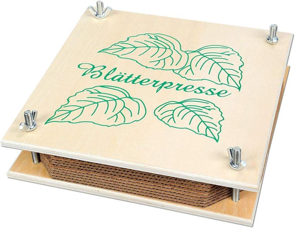 Wiemann Lehrmittel Kleine Pflanzenpresse 19,5 x 19,5 x 4 cm 9 Einlegeplatten