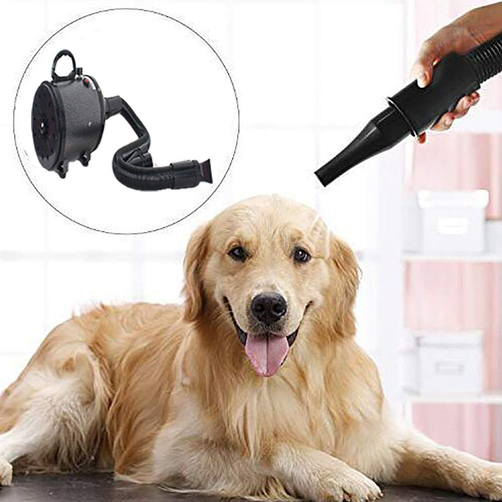 Europeanplug 2800W Dog Grooming Blower with Heater Portable Pet Hair Dryer, 3 Nozzles & Low Noise, Adjustable Speed and Temperature (Black),Europeanplug