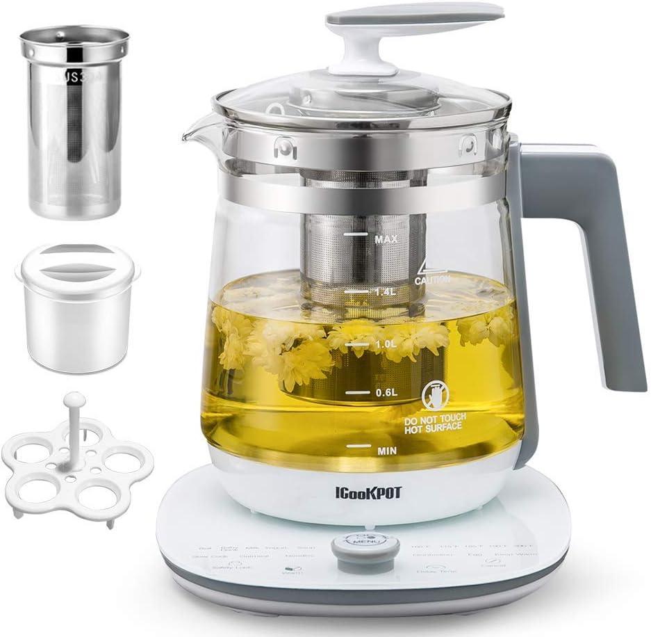 ICOOKPOT Multi-Use Electric Kettle Borosilicate Glass Tea Maker and Programmable Control Panel Base