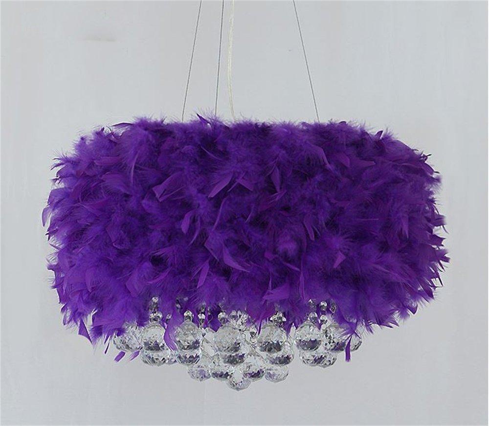 FANDBO@ Moderne Moderne Moderne Minimalistische Kreative E27 LED Feder Hängendes Lampen Kristall Metall Licht (farbe   Weiß-40-45cm) 334711