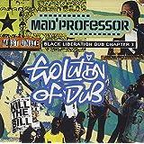 Evolution Of Dub: Black Liberation Dub, Chapter 3