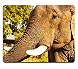 Cute Mouse Pads Vintage African Elephant Beautiful Floral Art Mat Gaming Mouse pad Mouse mat PM1896
