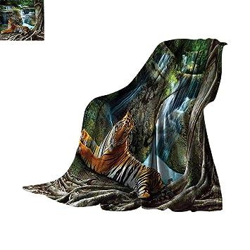 Amazon.com: Lightweight Blanket Masquerade Decorations ...